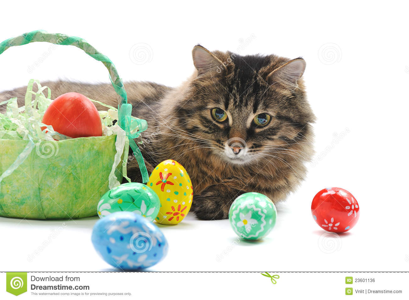 easter backgrounds cat images - photo #29