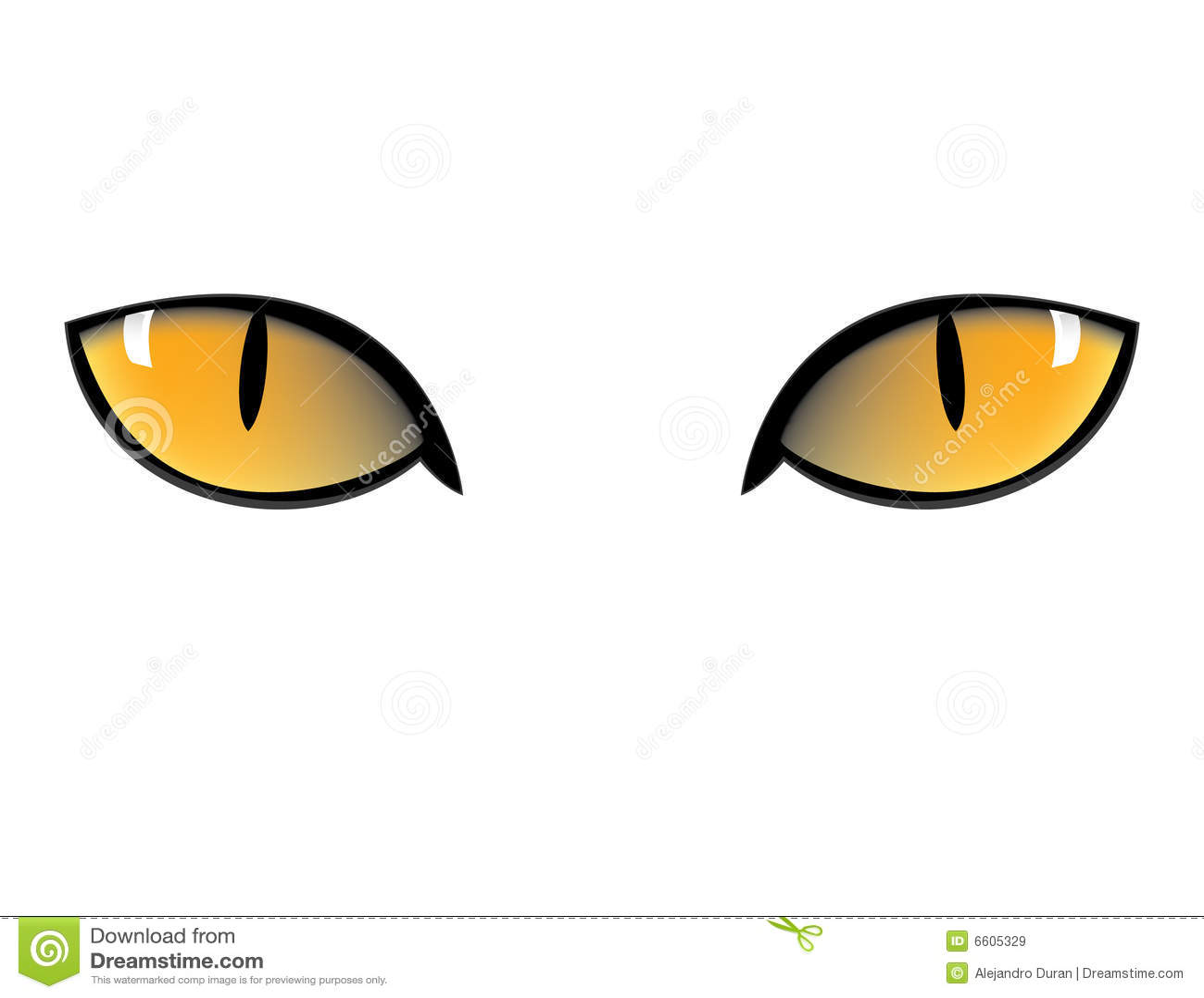 Cartoon Cat Eyes Nose