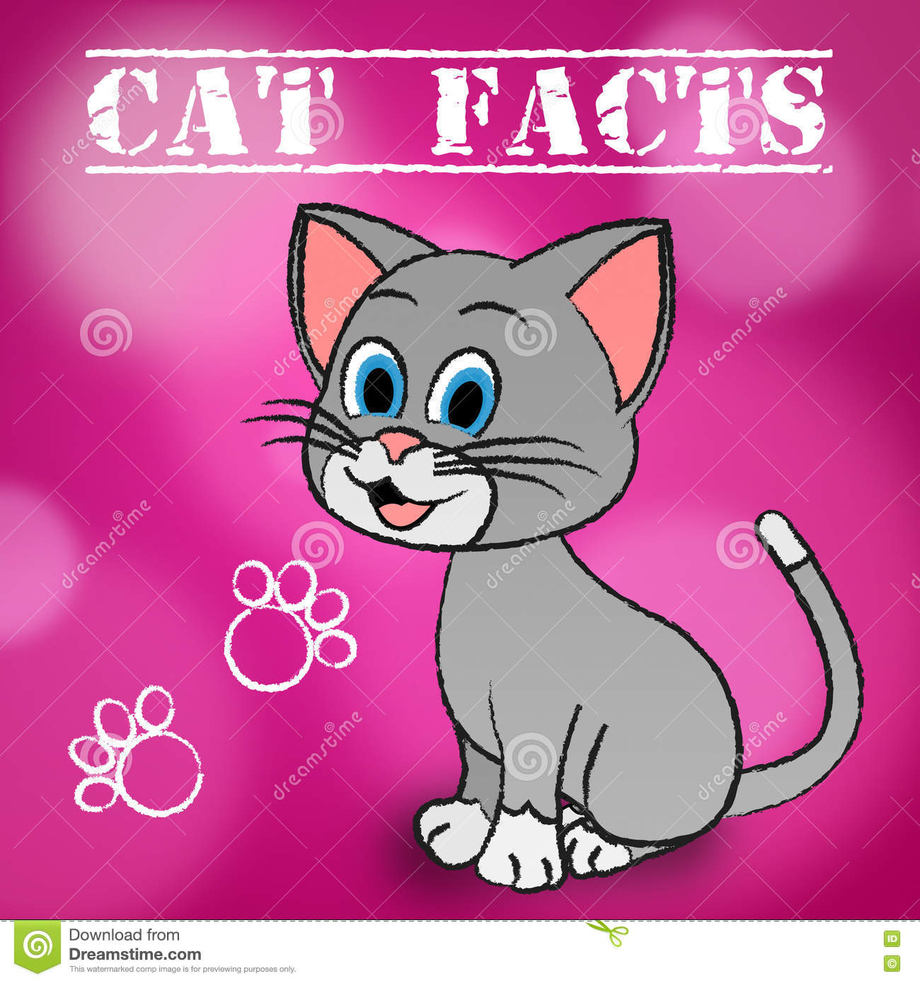 Cat Facts Indicates Details Kitty ed animali domestici