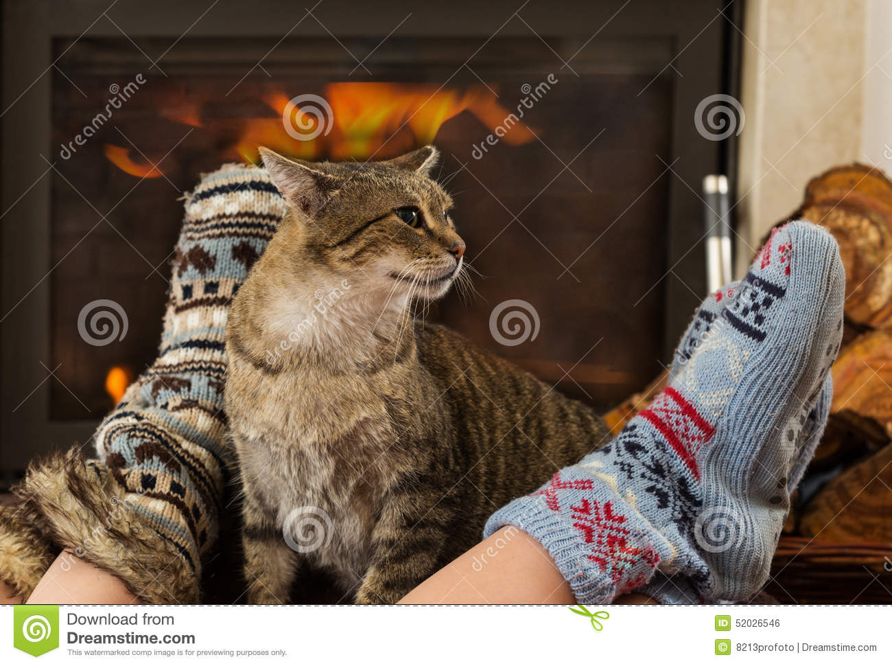 Cat And Feet In Front Of The Fireplace Stock Photo - Image: 52026546