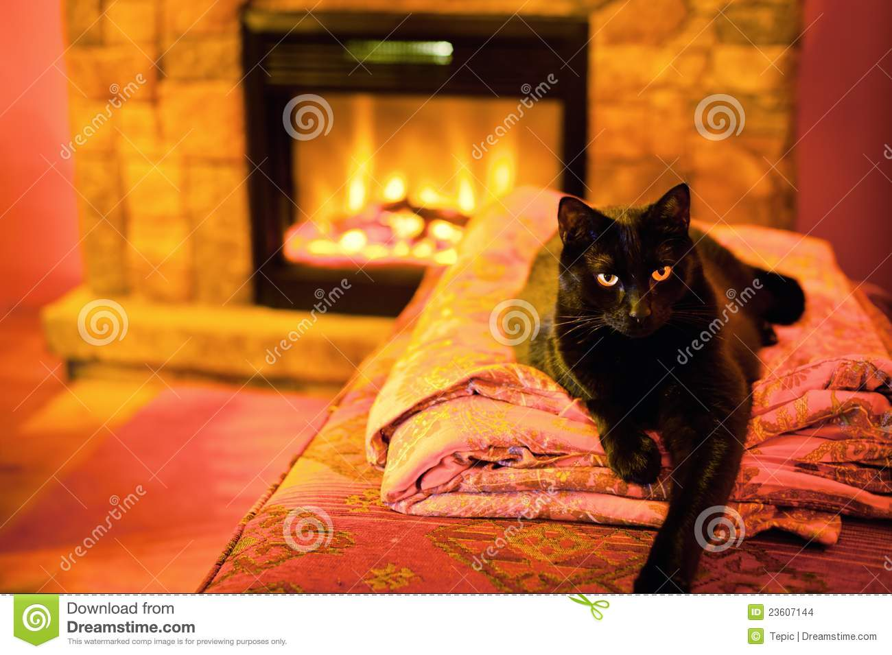 Cat Fireplace Stock Photos, Images, & Pictures - 426 Images