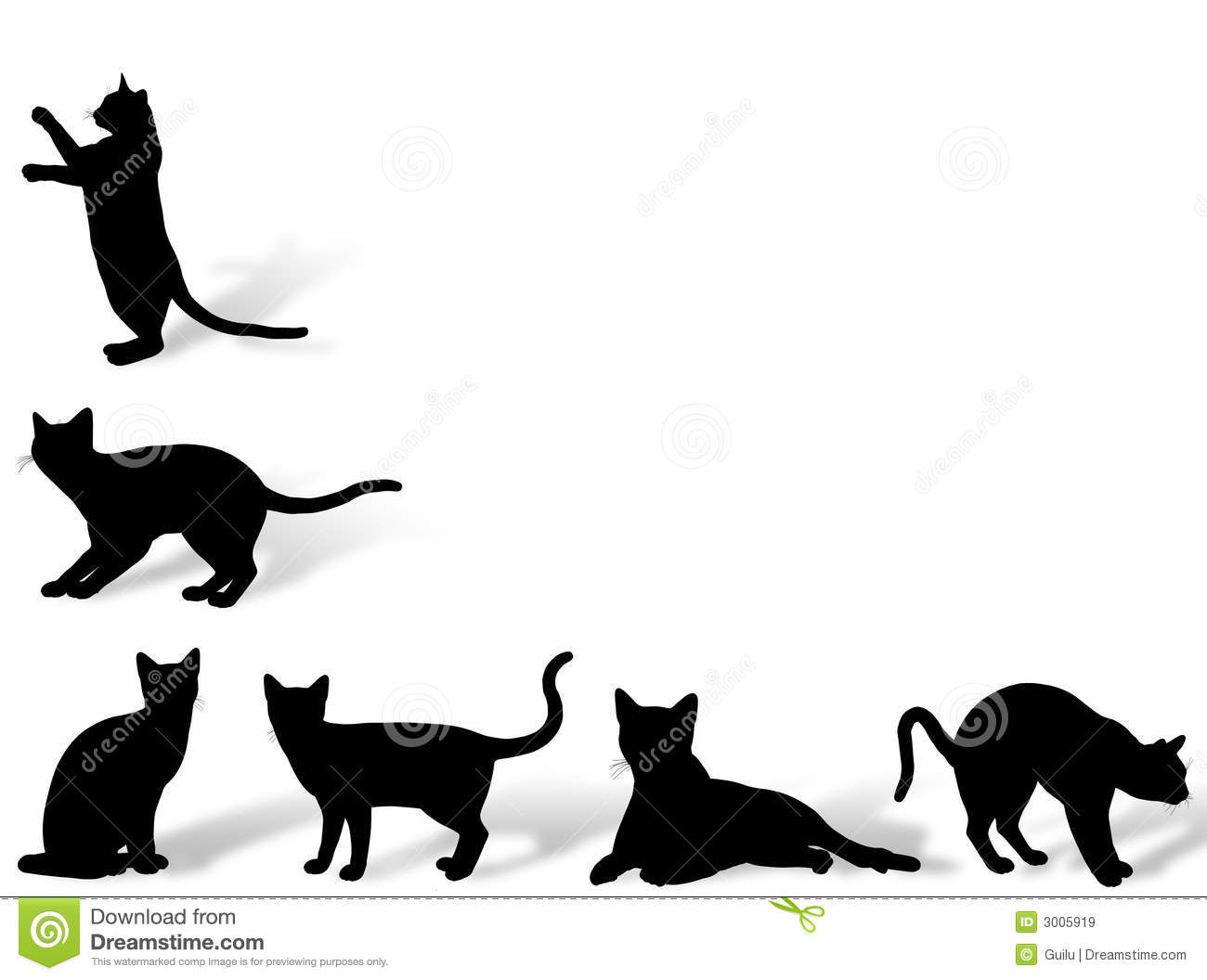cat frame royalty free stock images   image 3005919