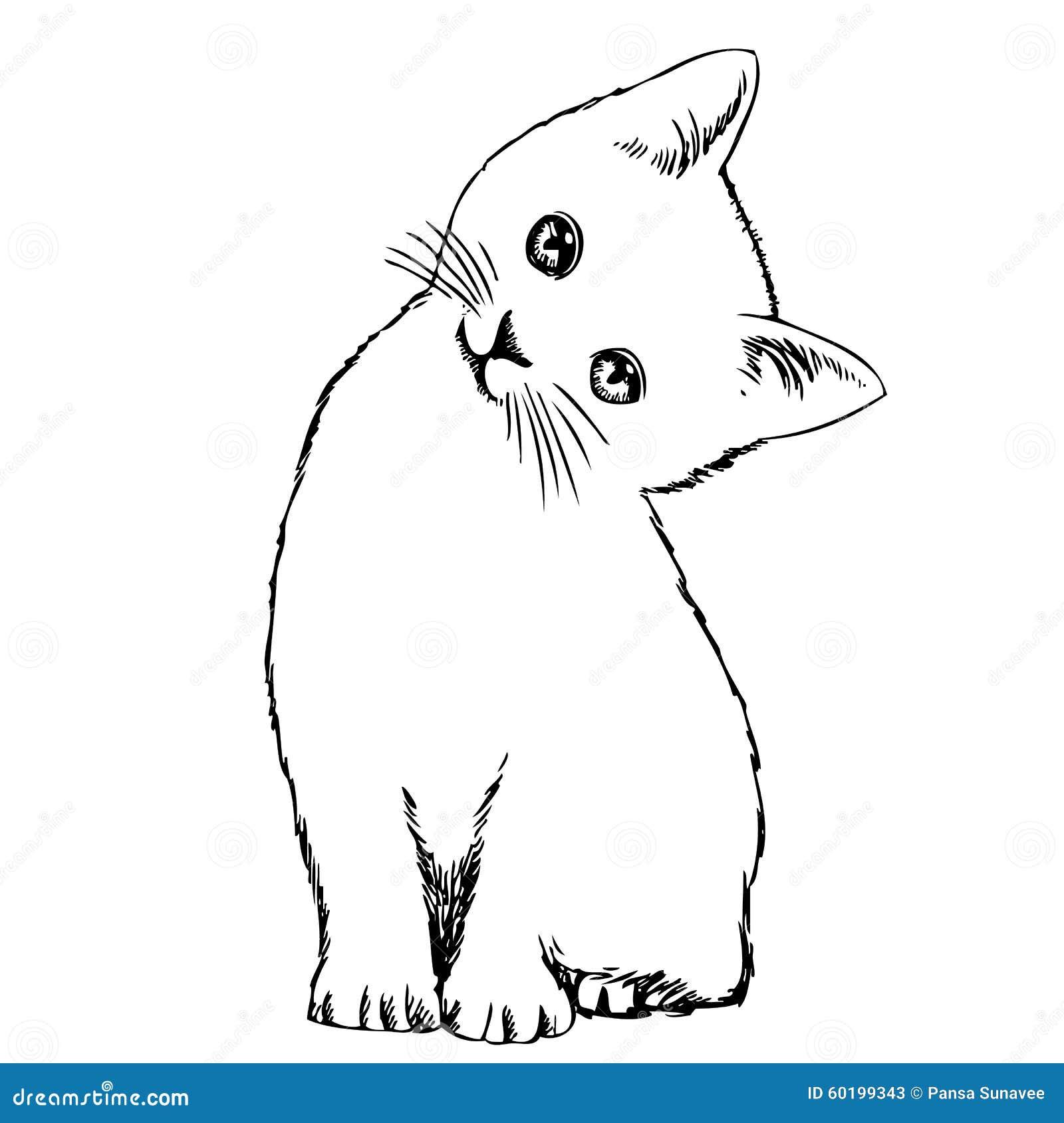 sandpaper cat scratcher
