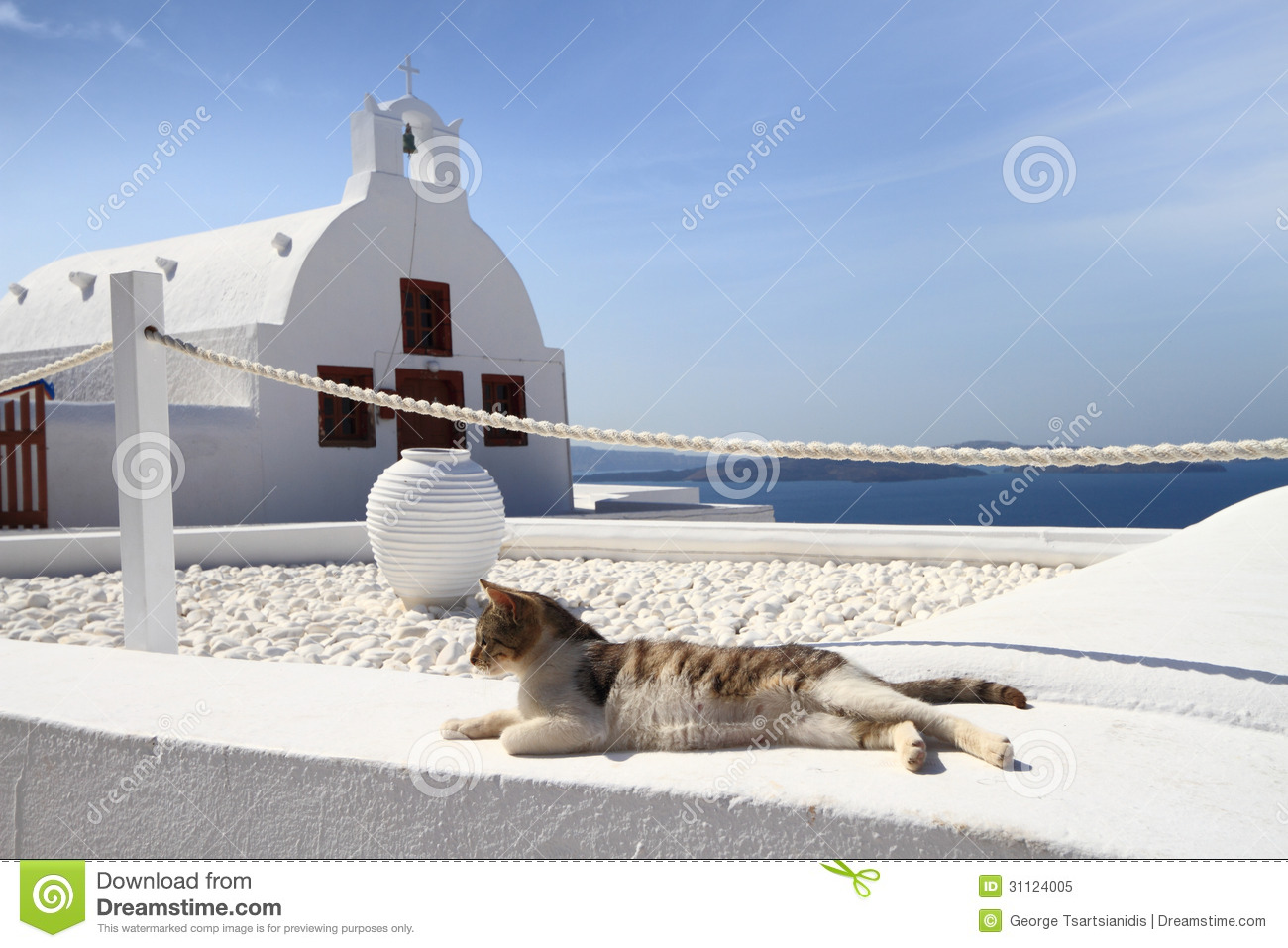 Cat In Front Of Classical Church In Santorini Royalty Free Stock Photo ...