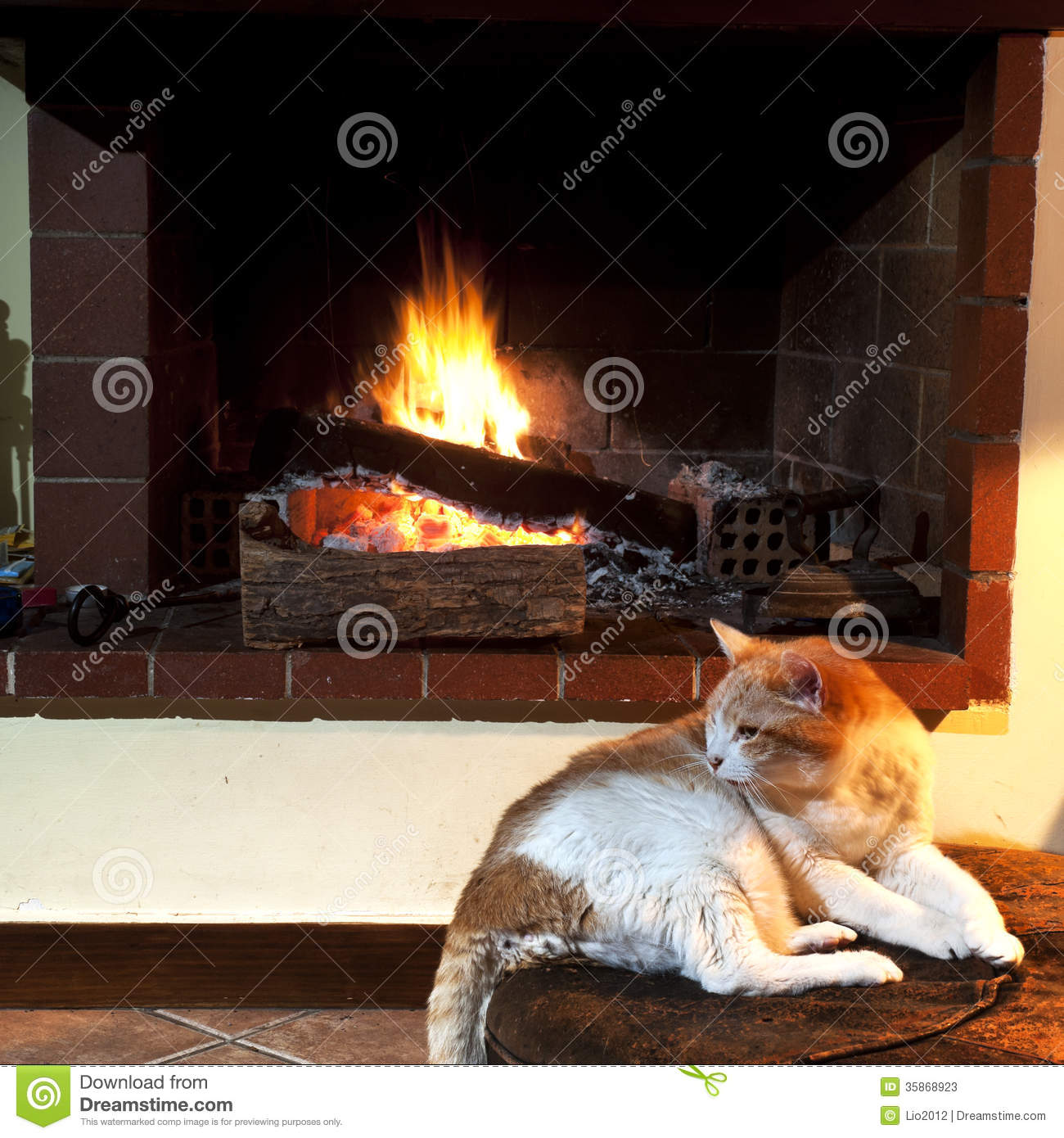 Cat In Front Of Fireplace Stock Images - Image: 35868954