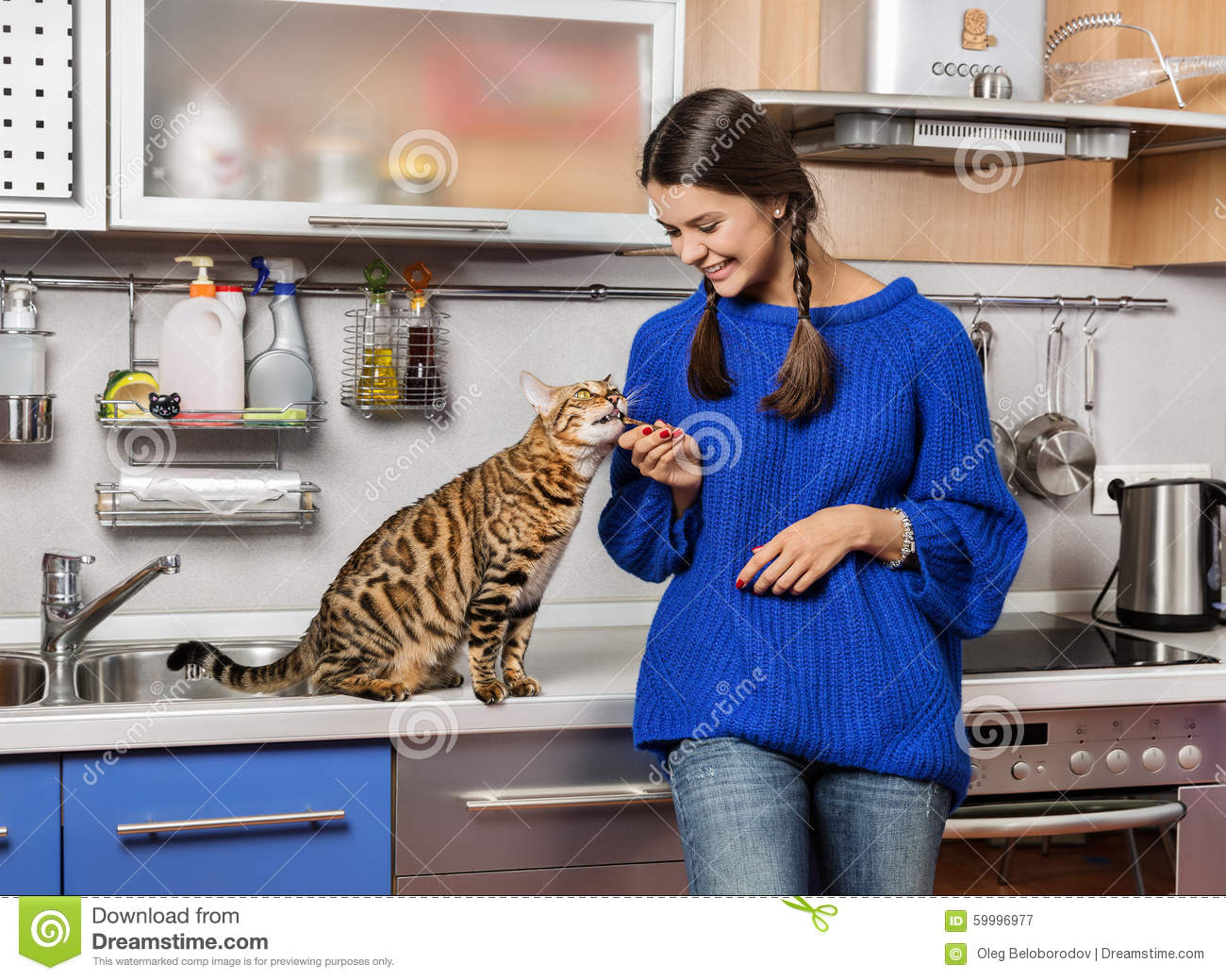 Cat And Girl In The Kitchen. Stock Image - Image: 59996977