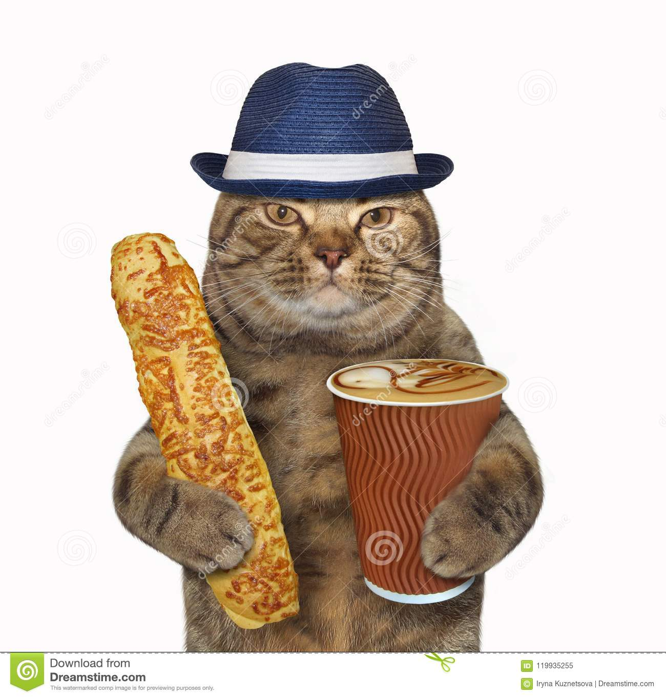 Cat Holds Cheese Bun And Coffee Stock Image
