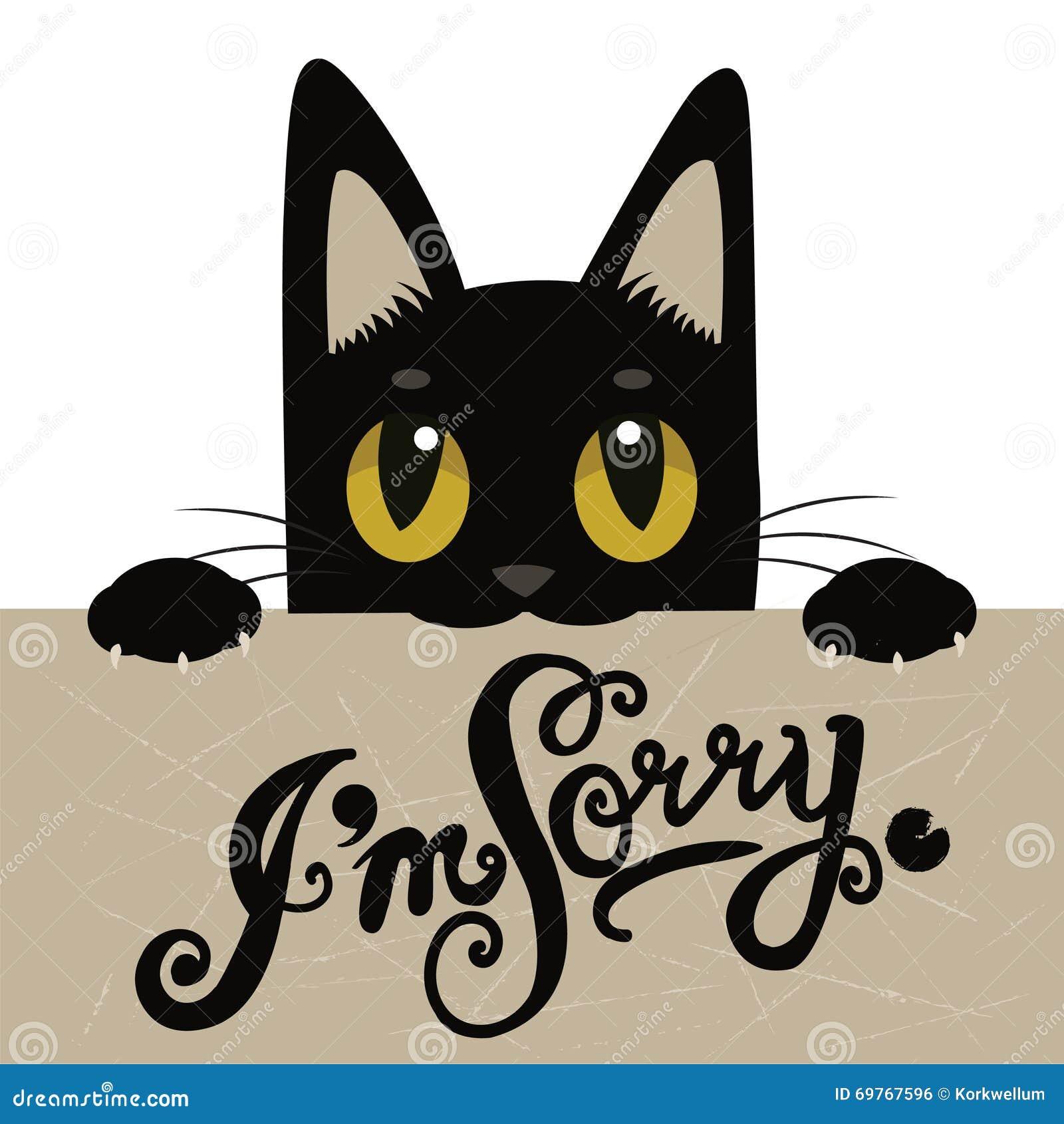 cat-holding-nera-sveglia-un-forum-con-il