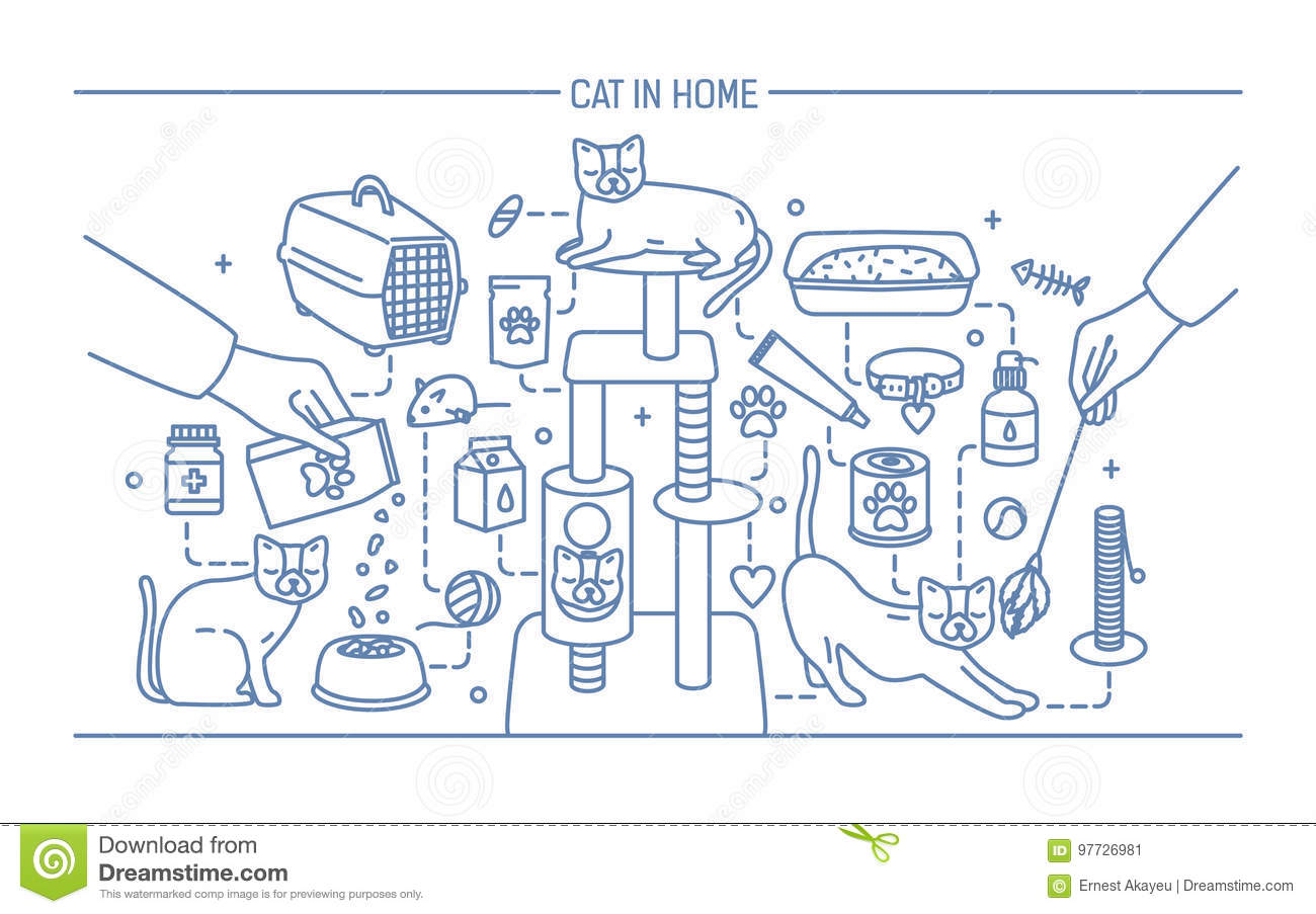 Cat In Home Contour Banner With Pet Toys, Meds And Kitty Meals ...