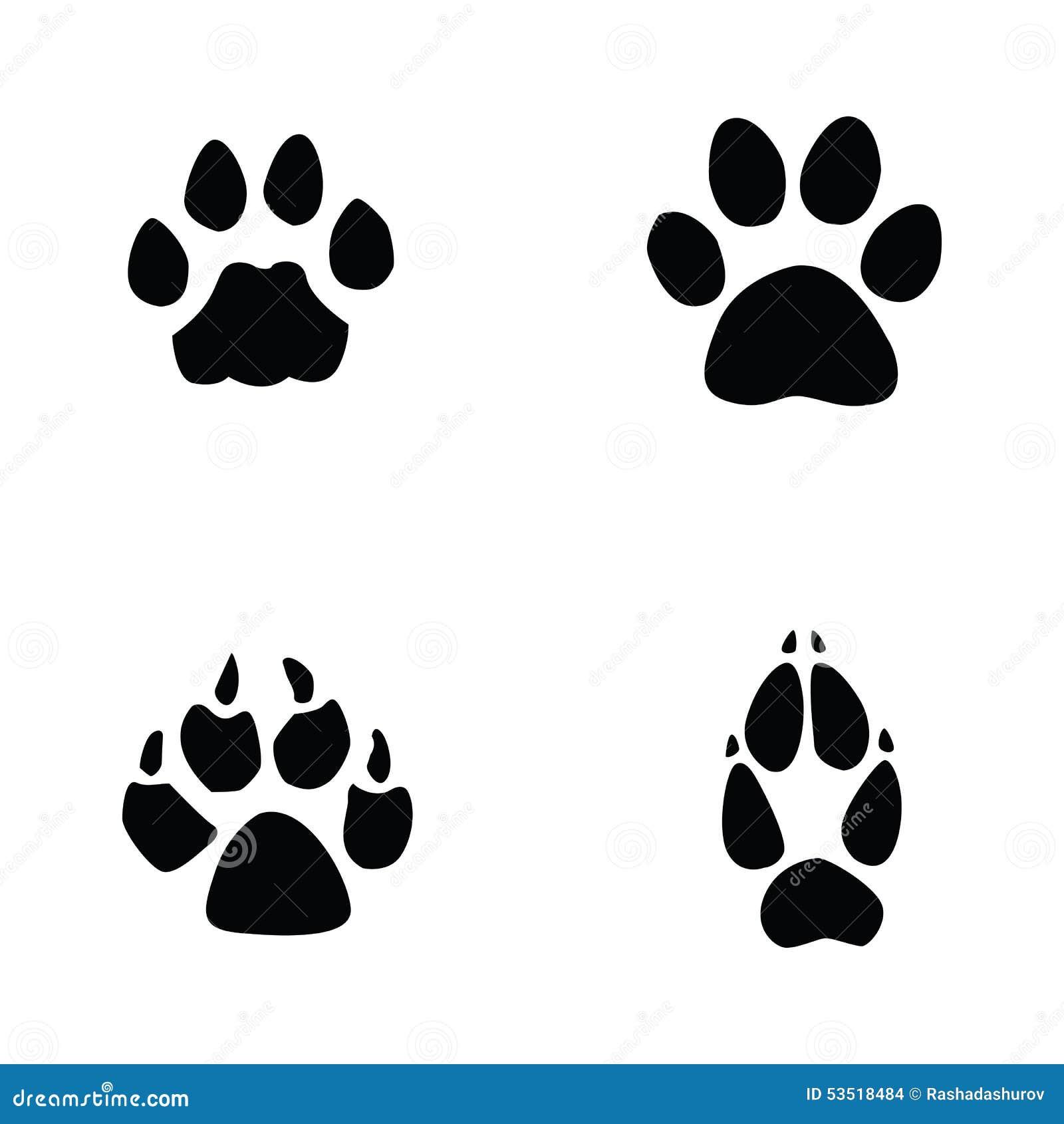 Cat jaguar dog fox footprint stock vector image 53518484