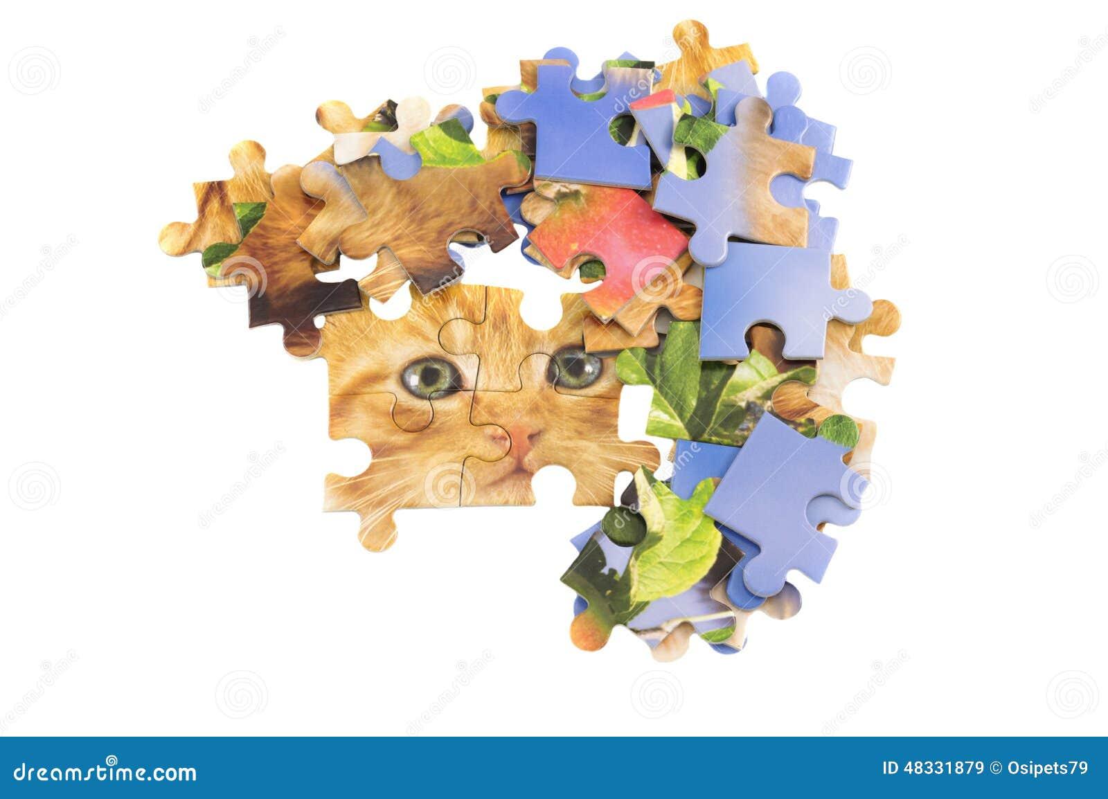 Cat jigsaw puzzle pieces