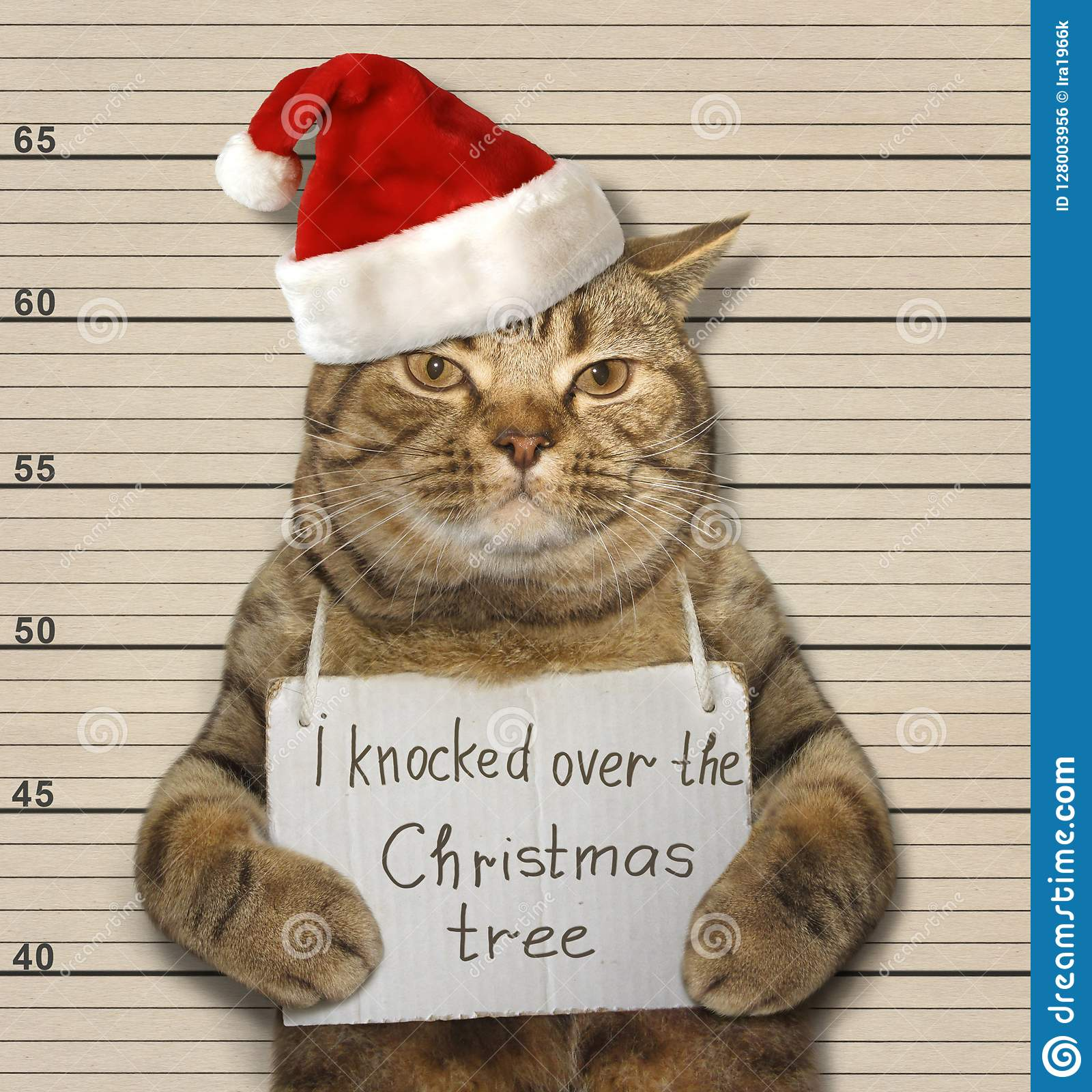 Cat Christmas.Bad Cat And Christmas Tree Stock Photo Image Of Year