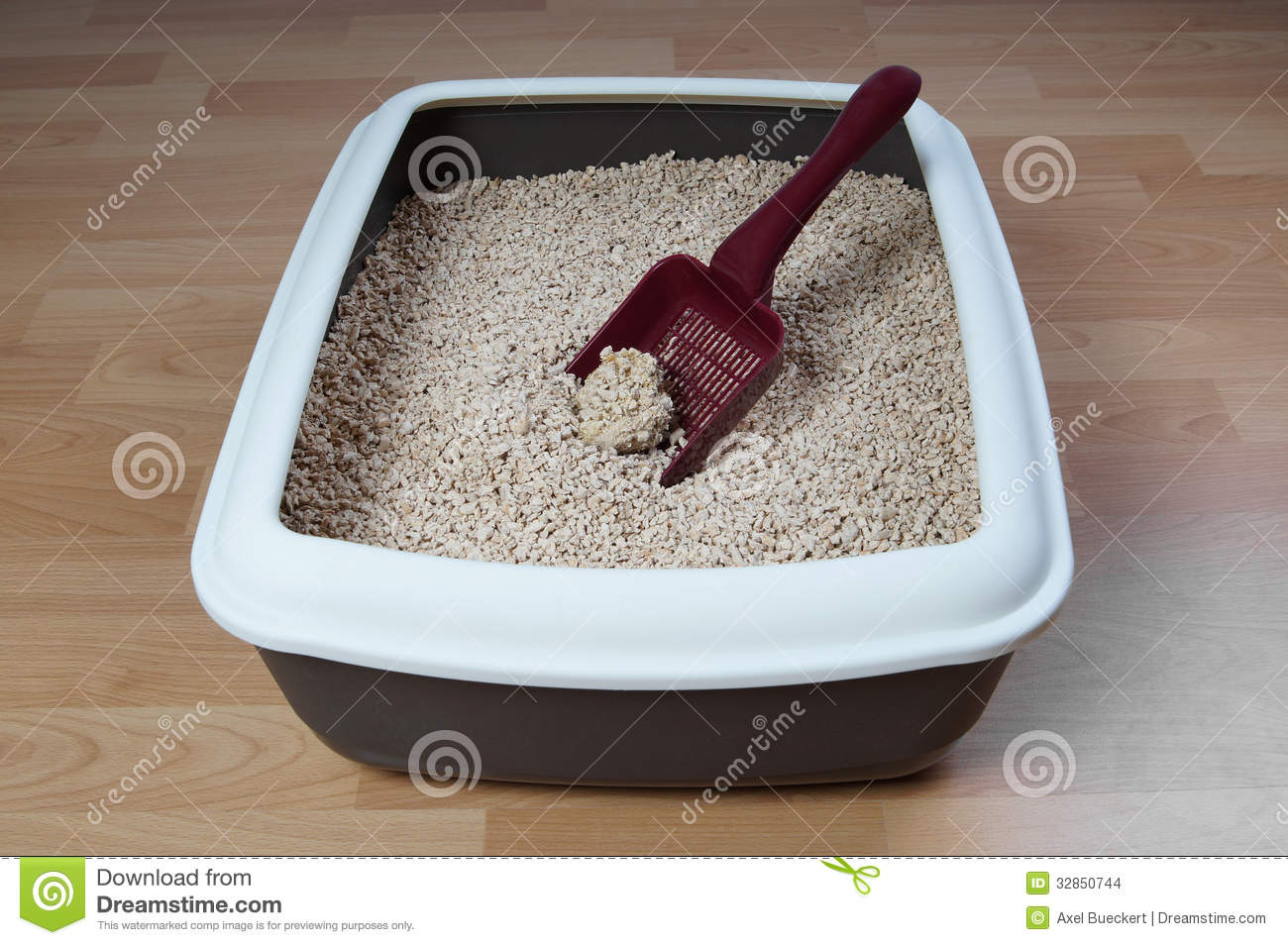 Cat litter box stock images image