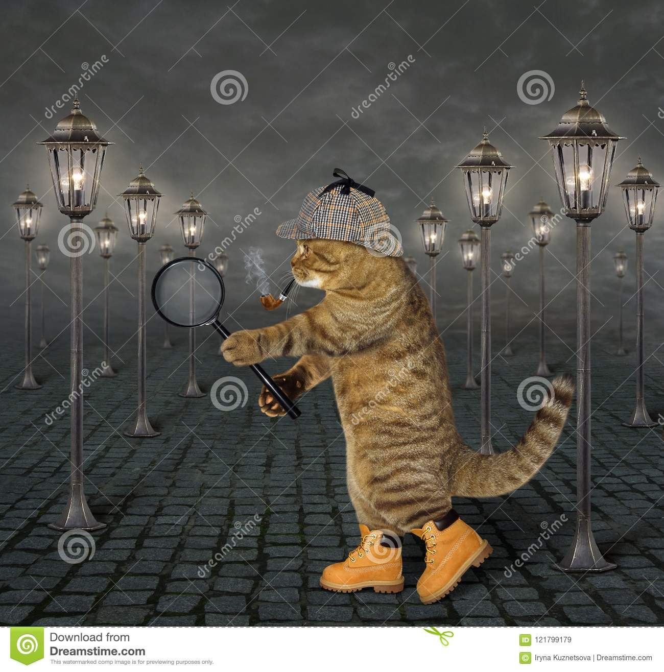 Cat with magnifying glass 2