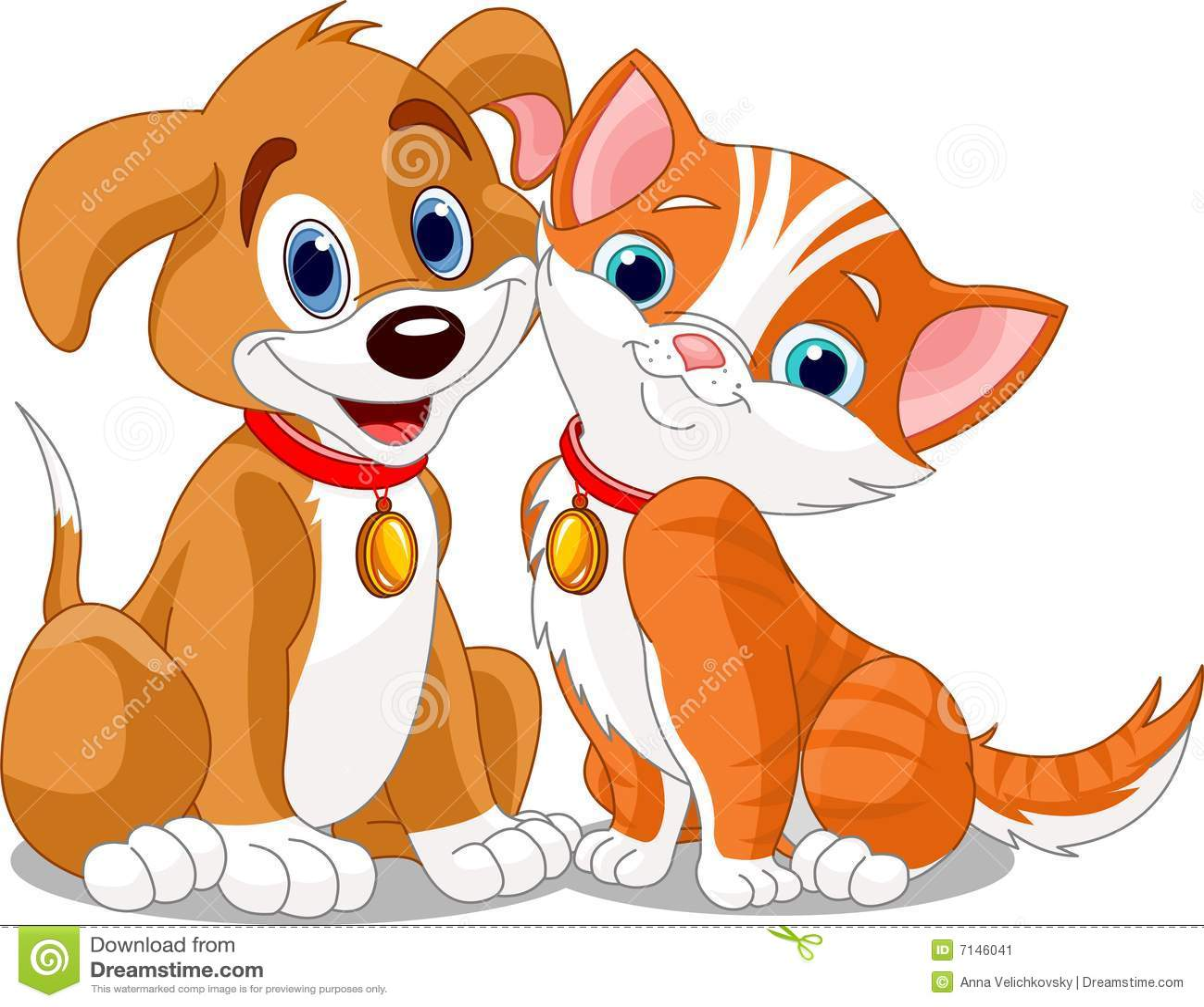Cat_n_dog