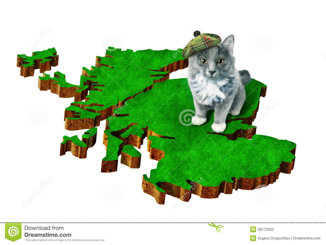 Cat with national symbol of scotland stock photo image of luck cat with national symbol of scotland buycottarizona Image collections