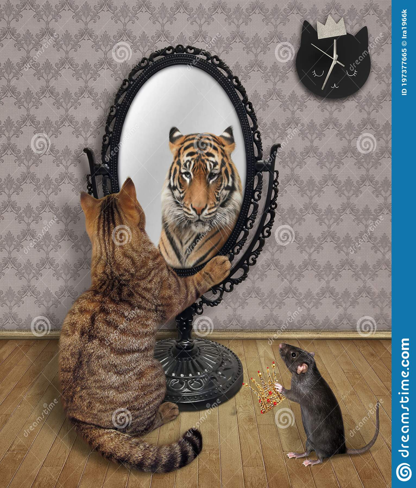 Lion mirror cat Cute Framed