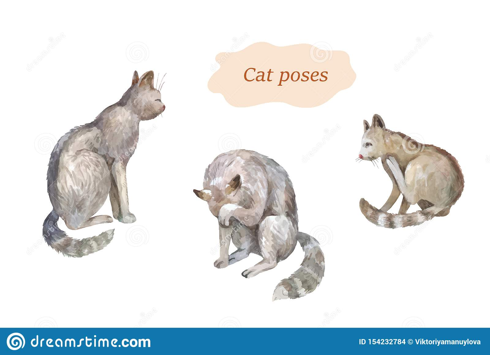 Cat poses set. Watercolor vector hand drawn sketches
