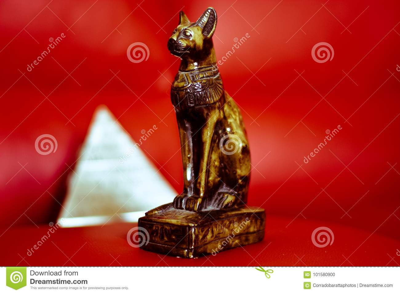The cat and the pyramids symbol of ancient Egypt