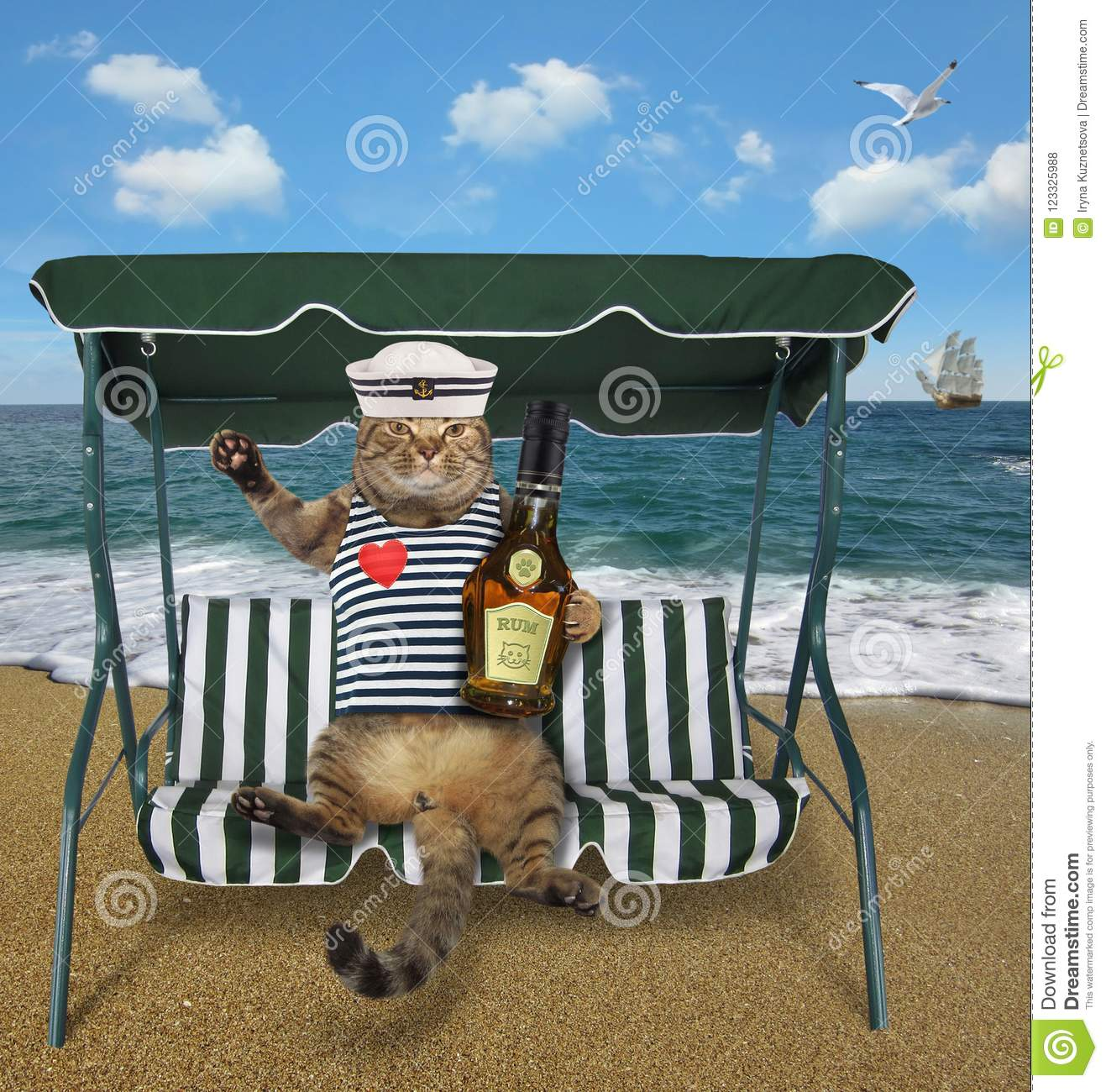 Cat with rum sits on a swing bench