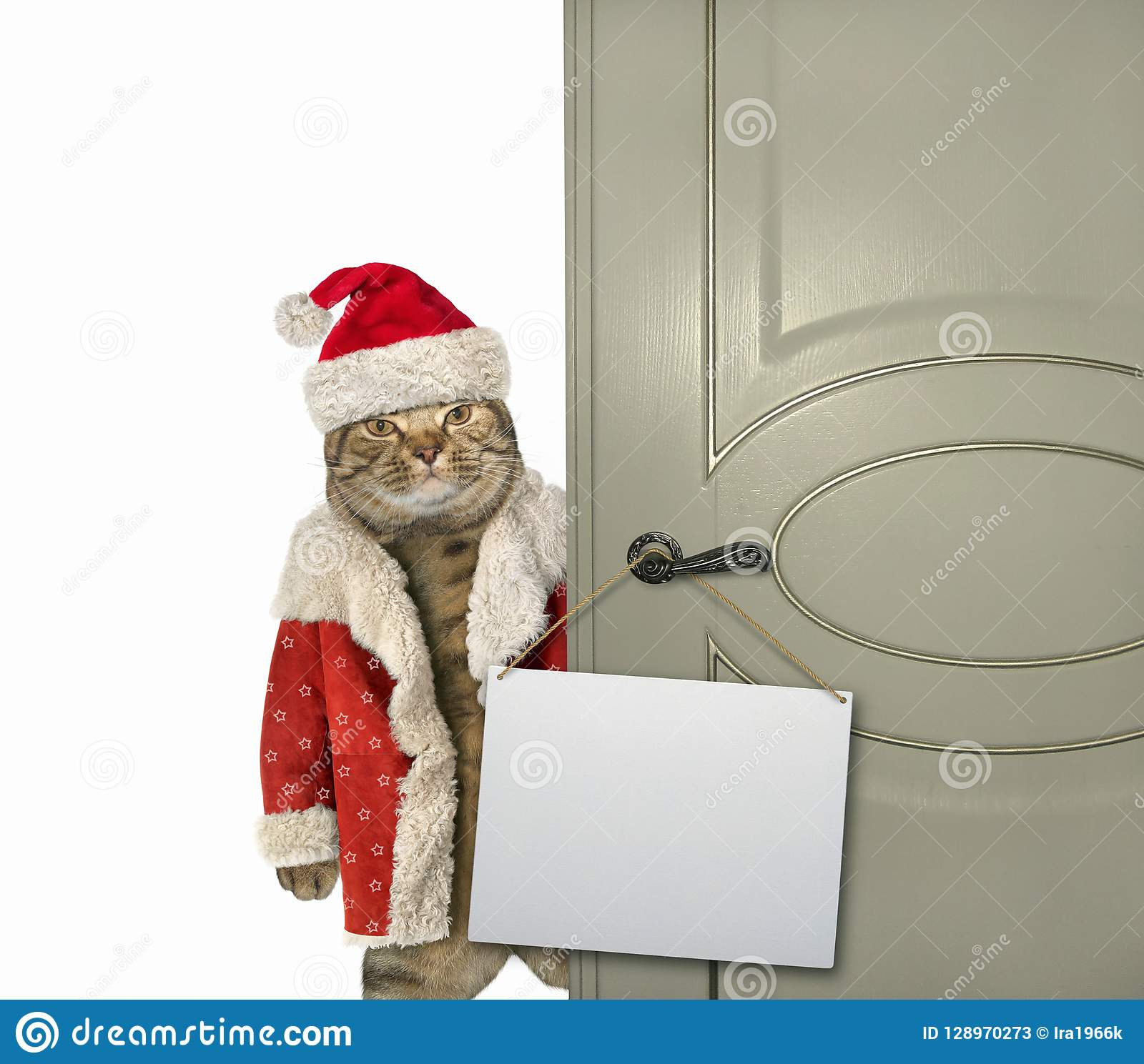 Cat Santa Claus At The Door Stock Image - Image of door, santa ...
