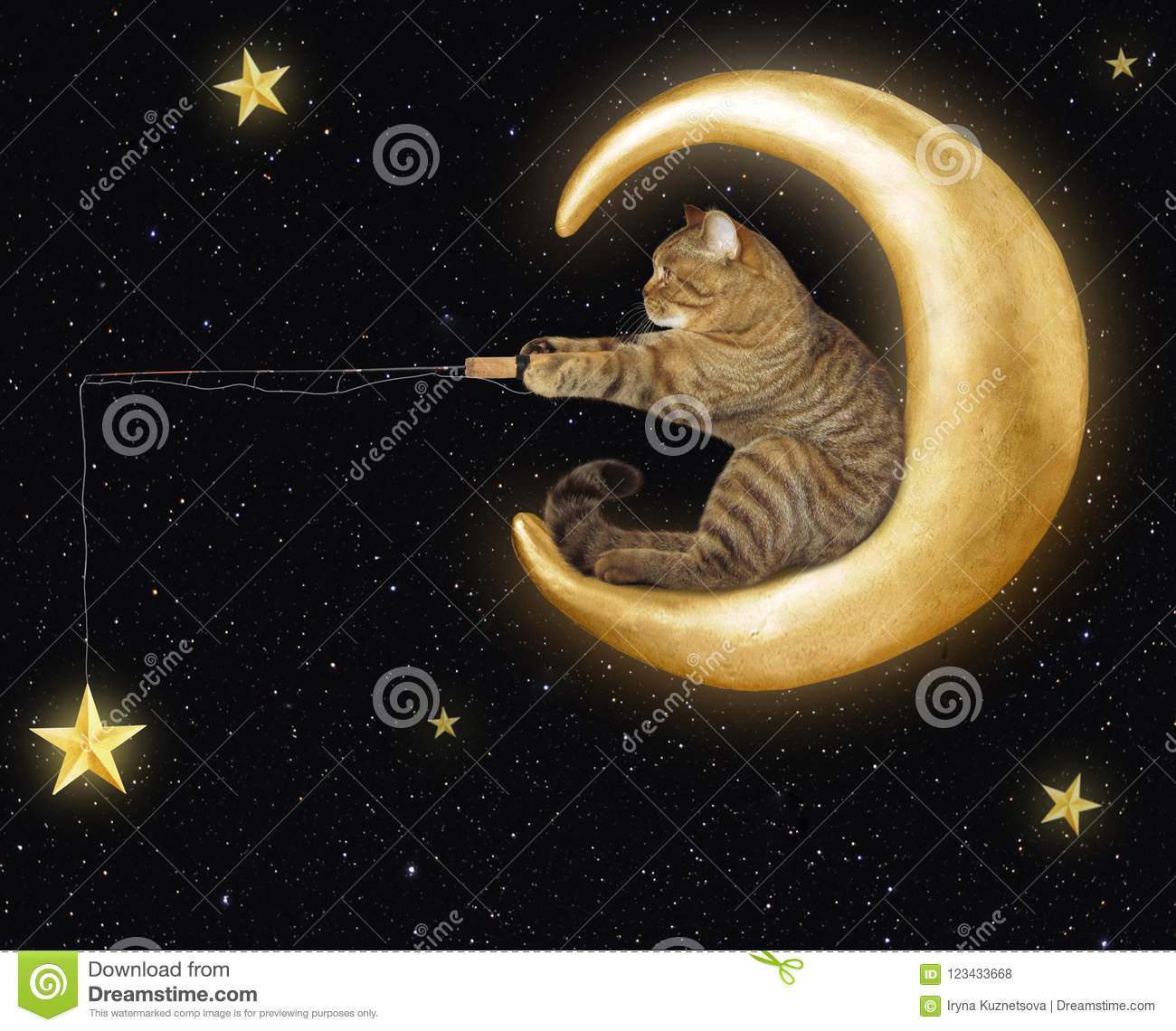 Cat on moon catches stars