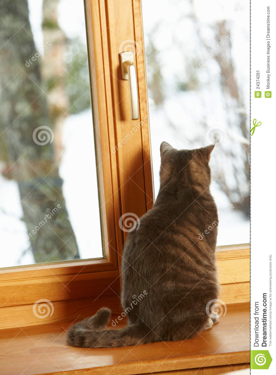 Cat Sitting On Window Ledge Looking At Snowy View Royalty