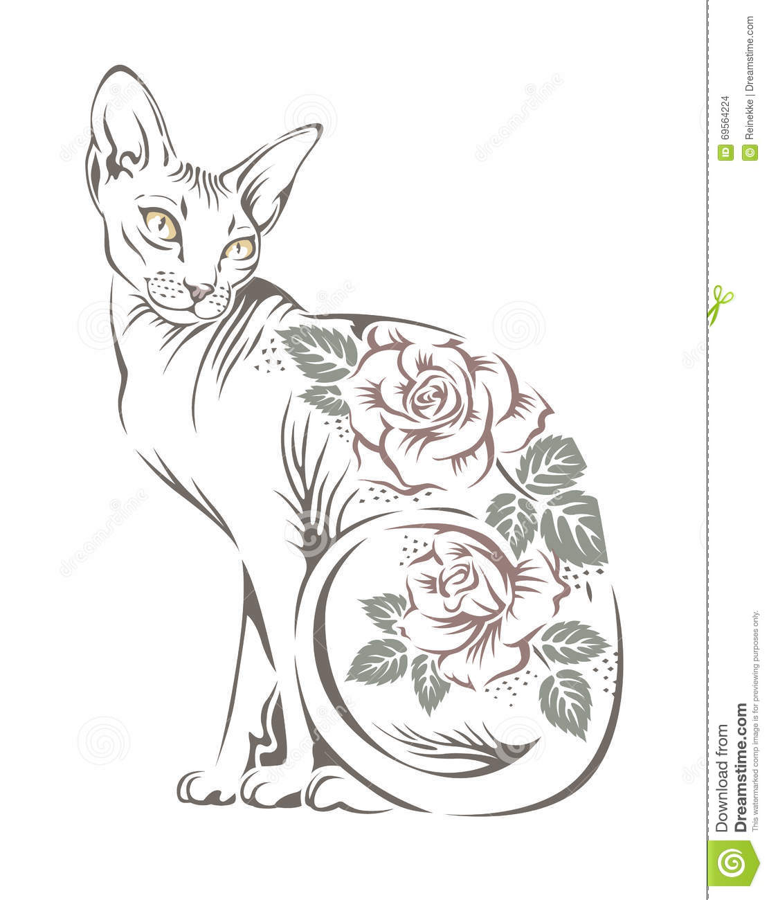 cat sphinx stock vector illustration of domestic sphinx