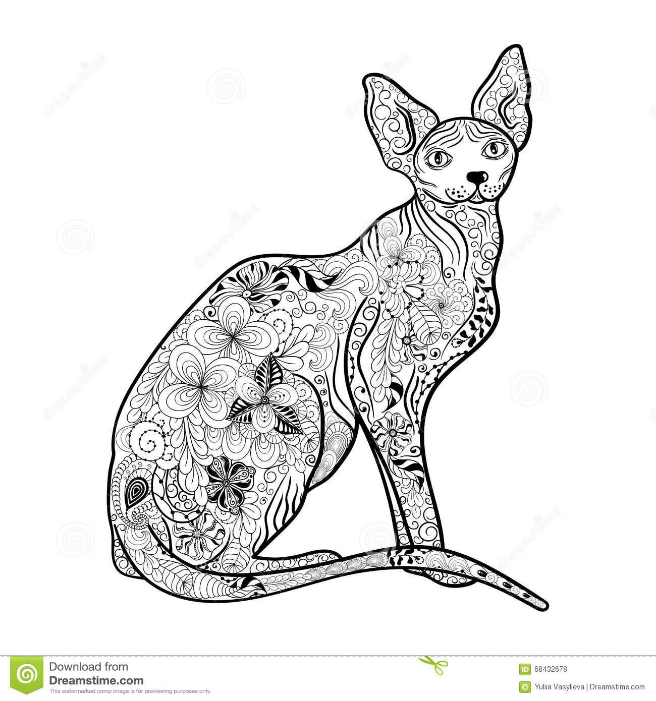 Cat Sphynx Doodle Stock Vector Illustration Of Graphic