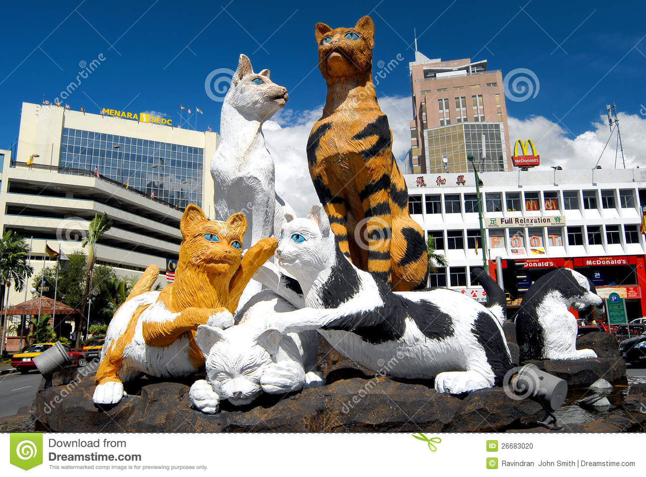 cat statues dreaming city