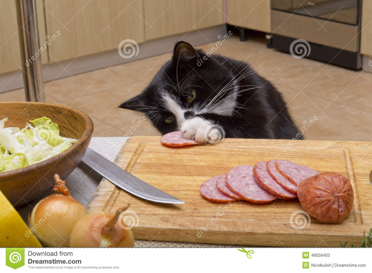 Cat Steals Food From Plate