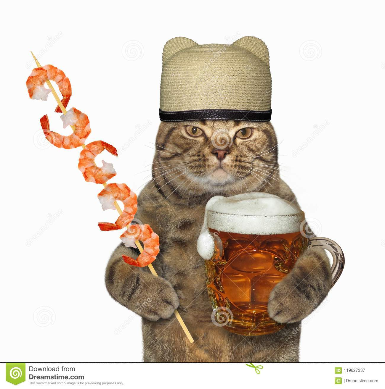 Cat With Beer And Shrimp Skewer Stock Image