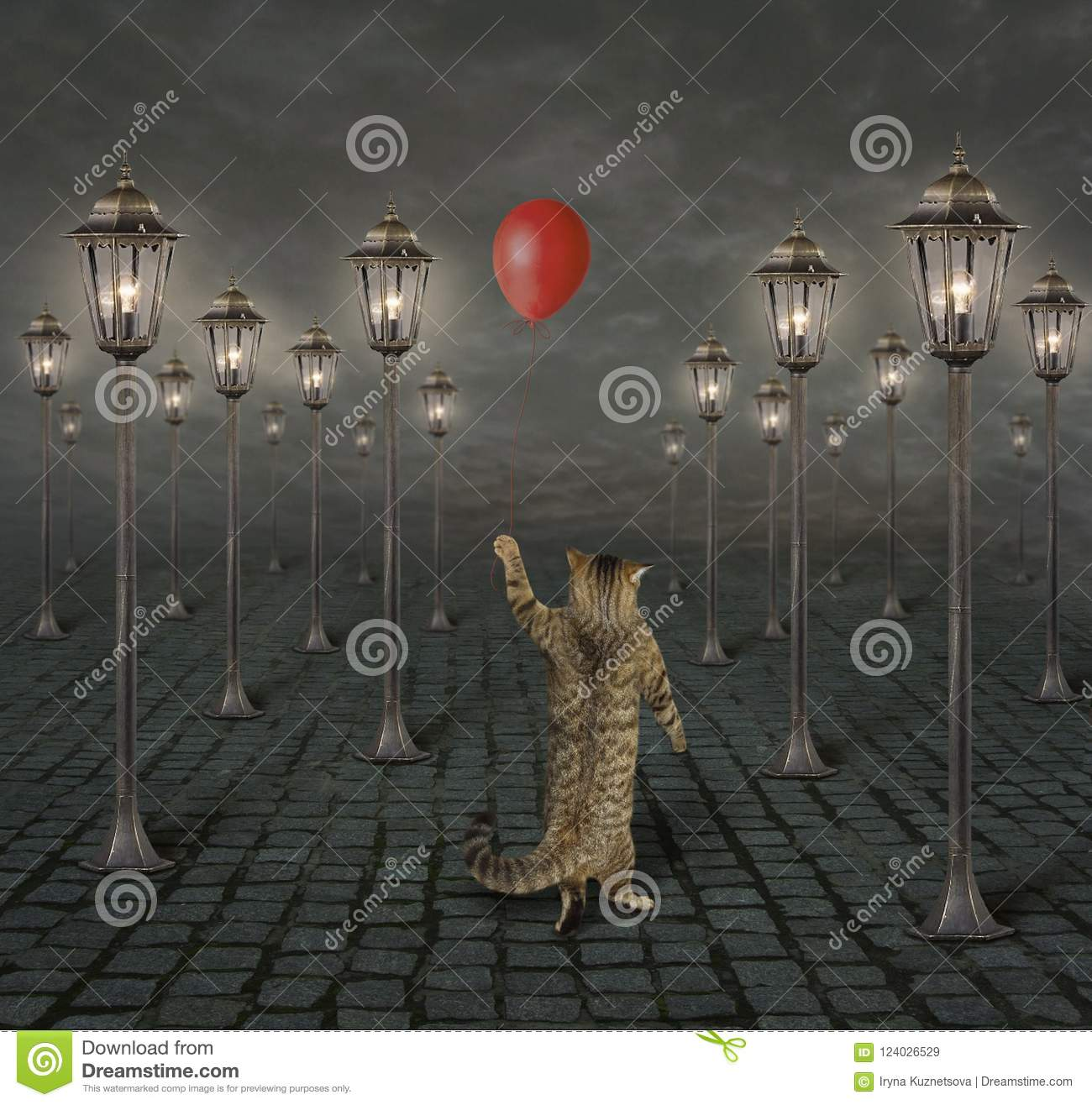 Cat and street lights