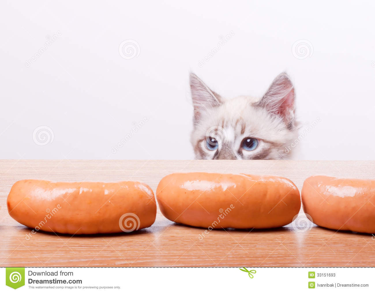 Cat tries to steal a sausage