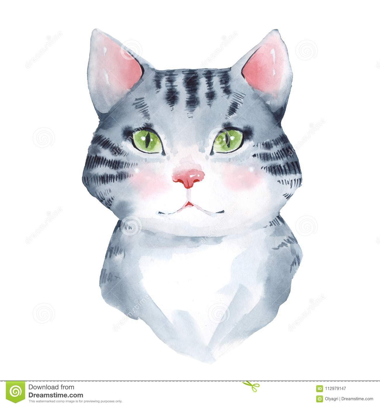 Cat. Watercolor illustration, isolated