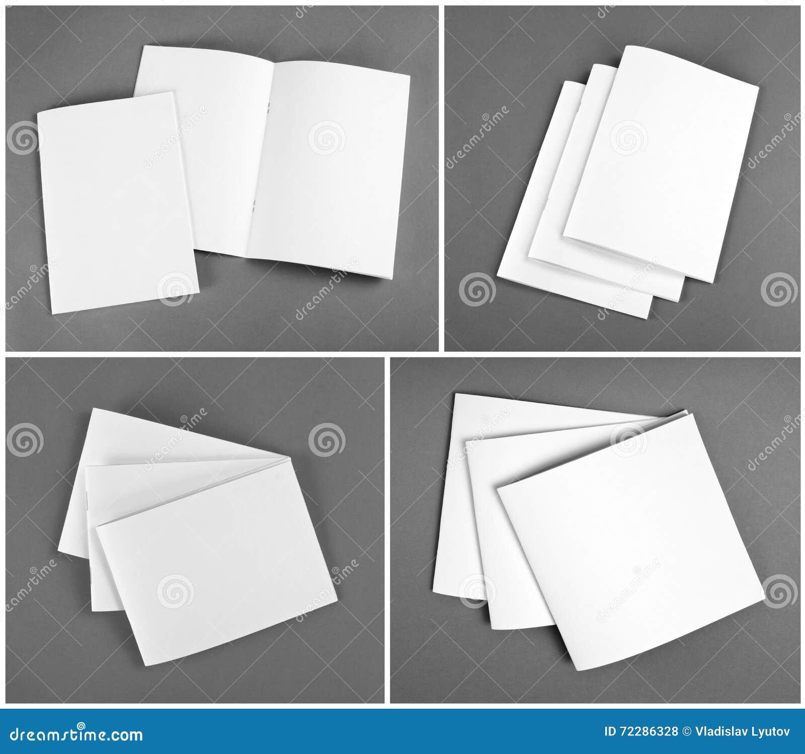 Catalogo in bianco, opuscolo, riviste, derisione del libro su