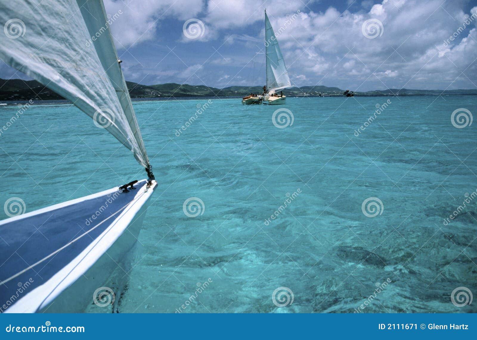Catamaran widok