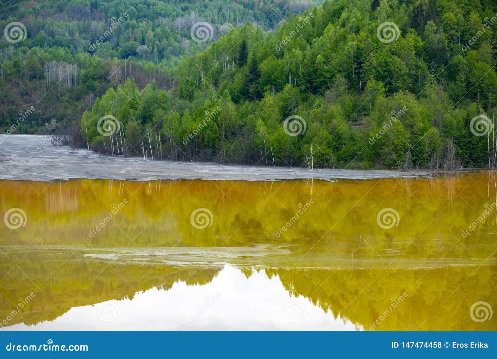 Catastrophe ?cologique : pollution de cyanure au lac Geamana pr?s de Rosia Montana, Roumanie