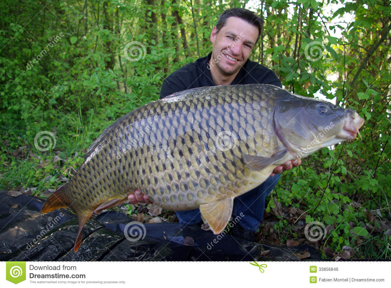 Catch of fish common carp stock photo image of outdoors for Fishing times free