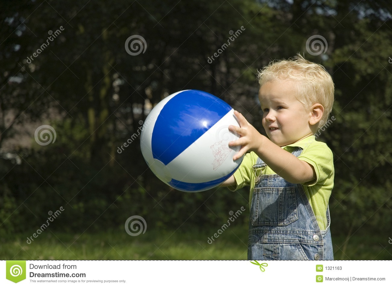 Catching The Ball -2 Stock Photos - Image: 1321163