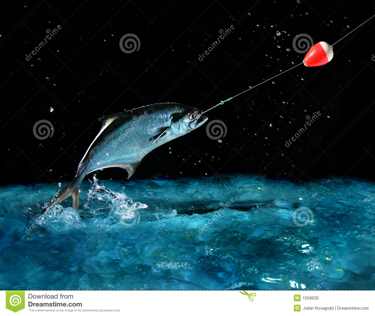 Catching a big fish at night stock photo image 1559630 for Catching big fish