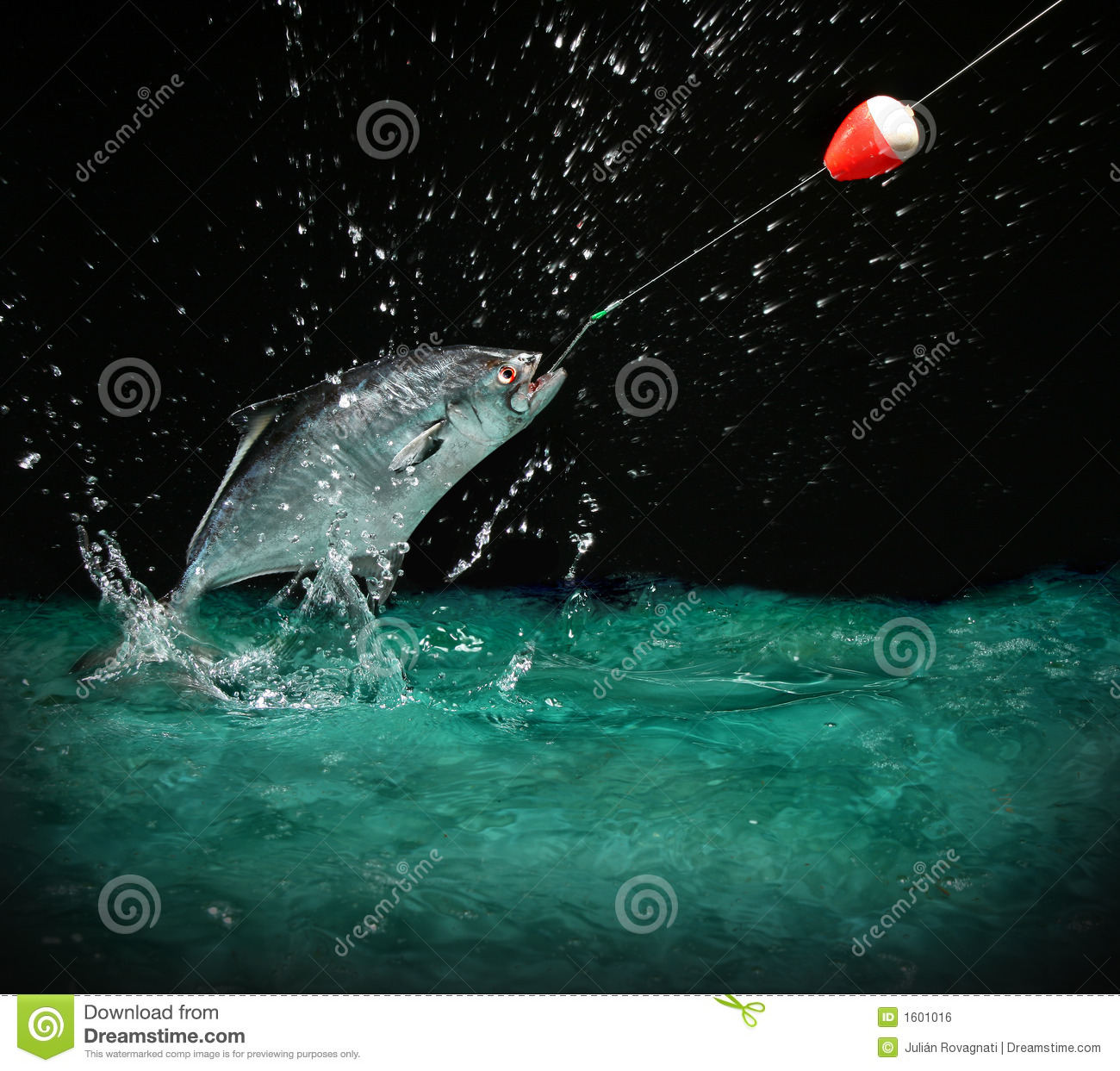 Catching a big fish at night royalty free stock image for Catching big fish