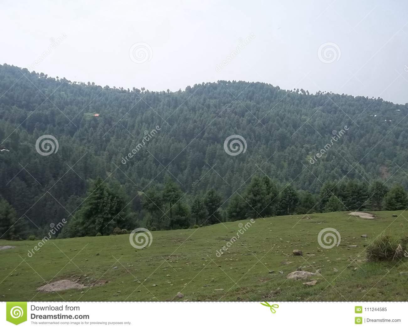 Catchy natural scene of Sudhnoti Kashmir