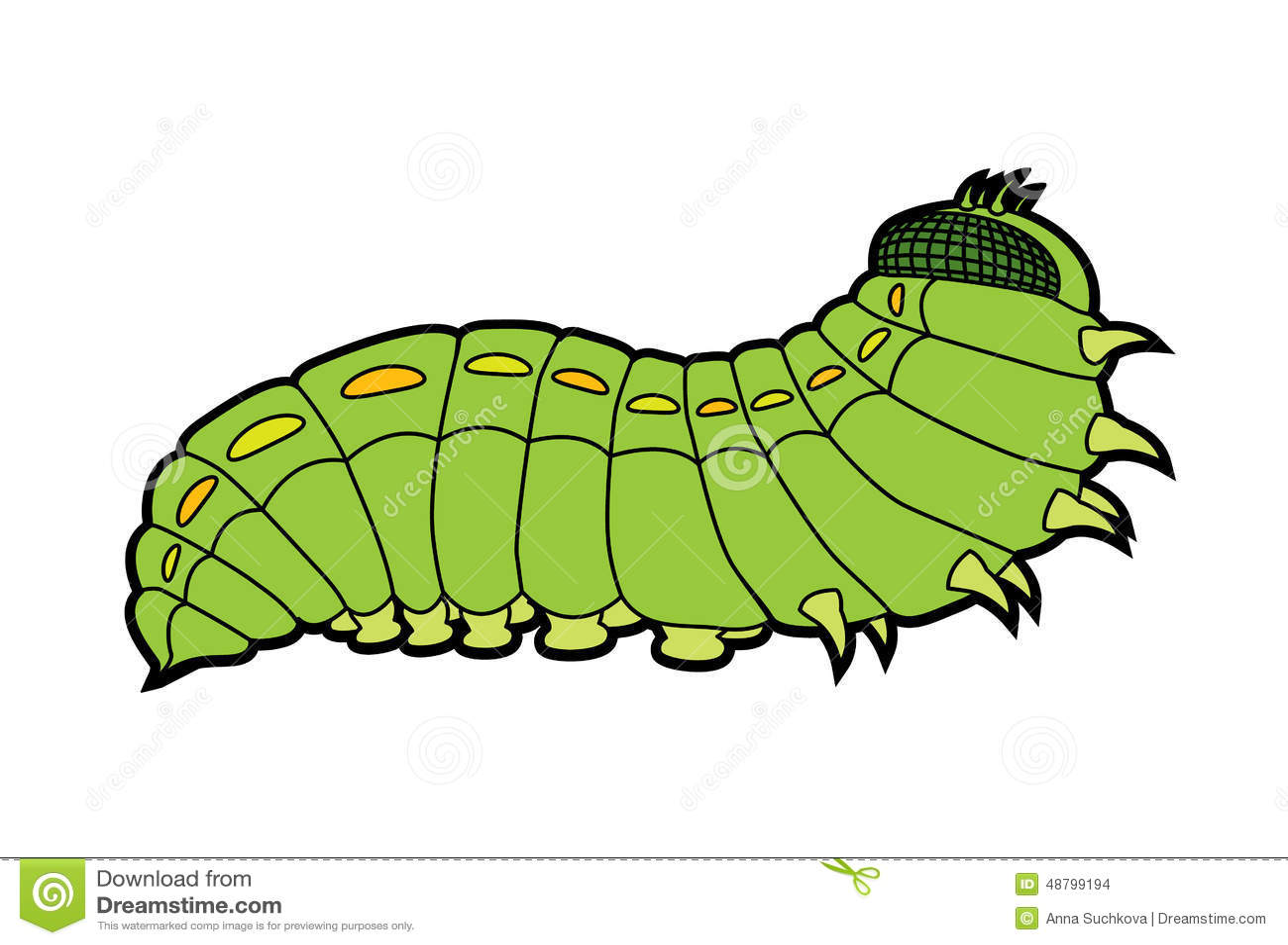 Caterpillar Butterfly Stock Vector Illustration Of Wildlife 48799194