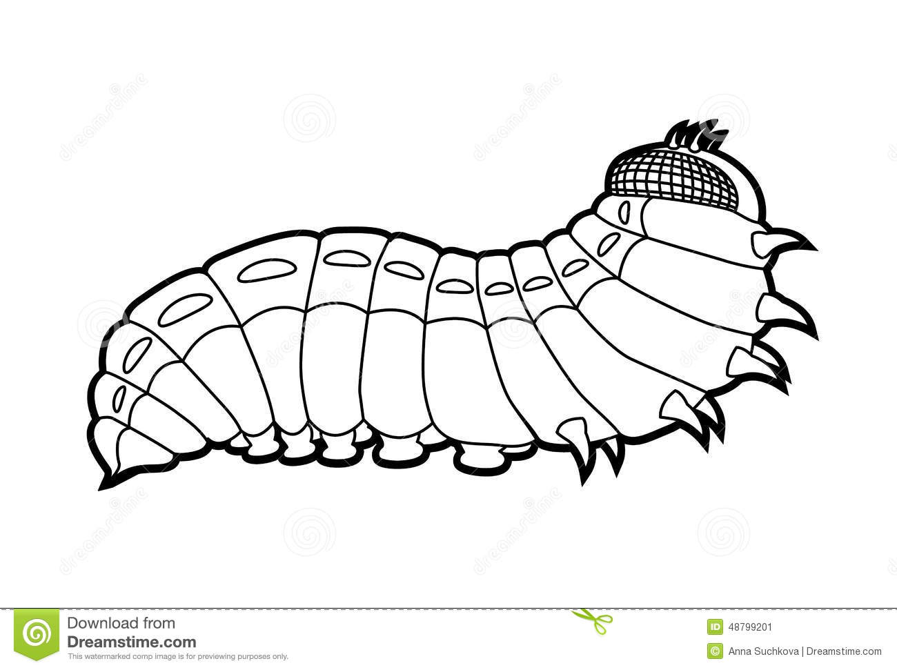 Larval Stock Illustrations – 121 Larval Stock Illustrations ... for Clipart Caterpillar Black And White  110zmd