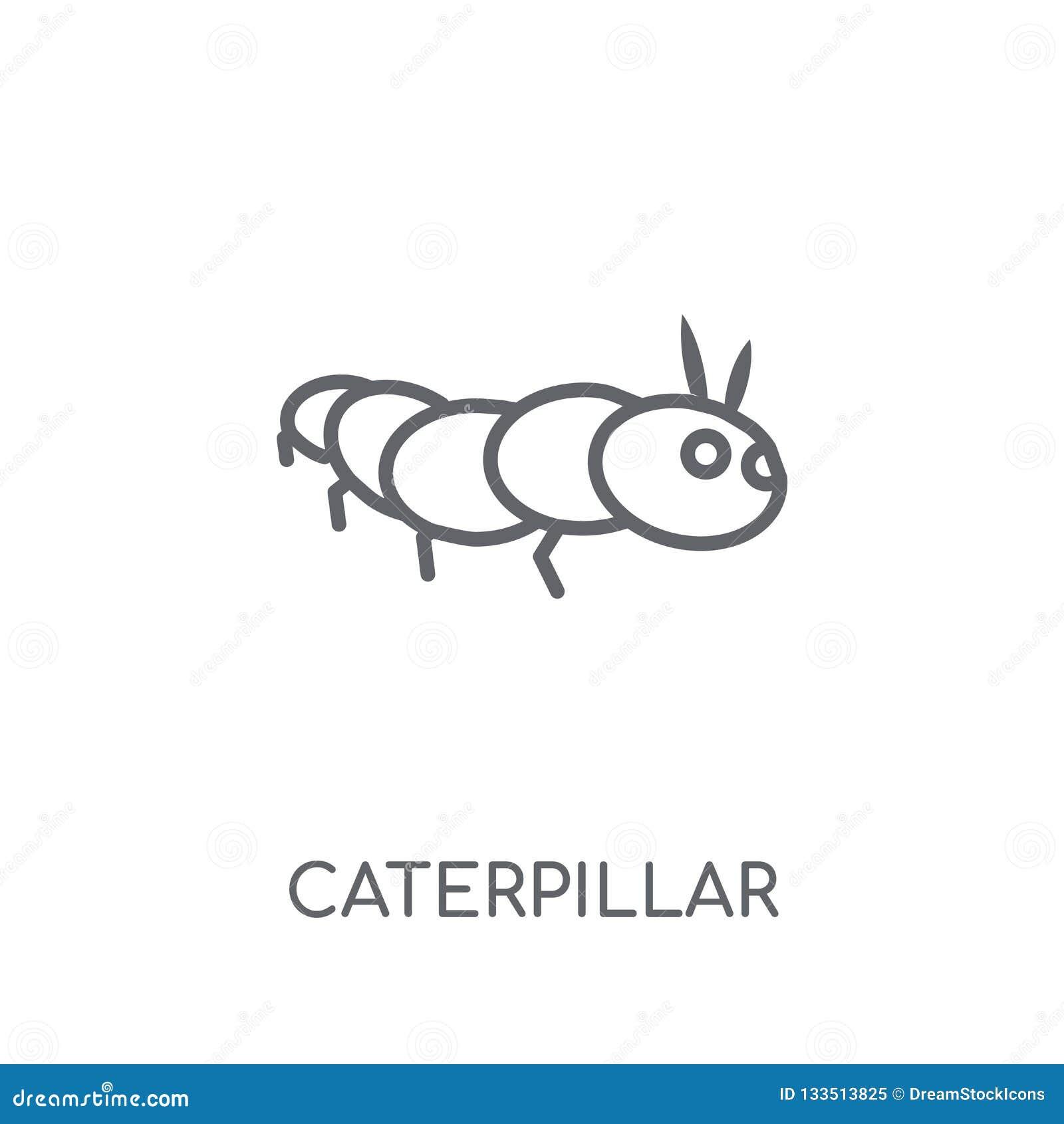 a58853a78df Caterpillar Linear Icon. Modern Outline Caterpillar Logo Concept ...