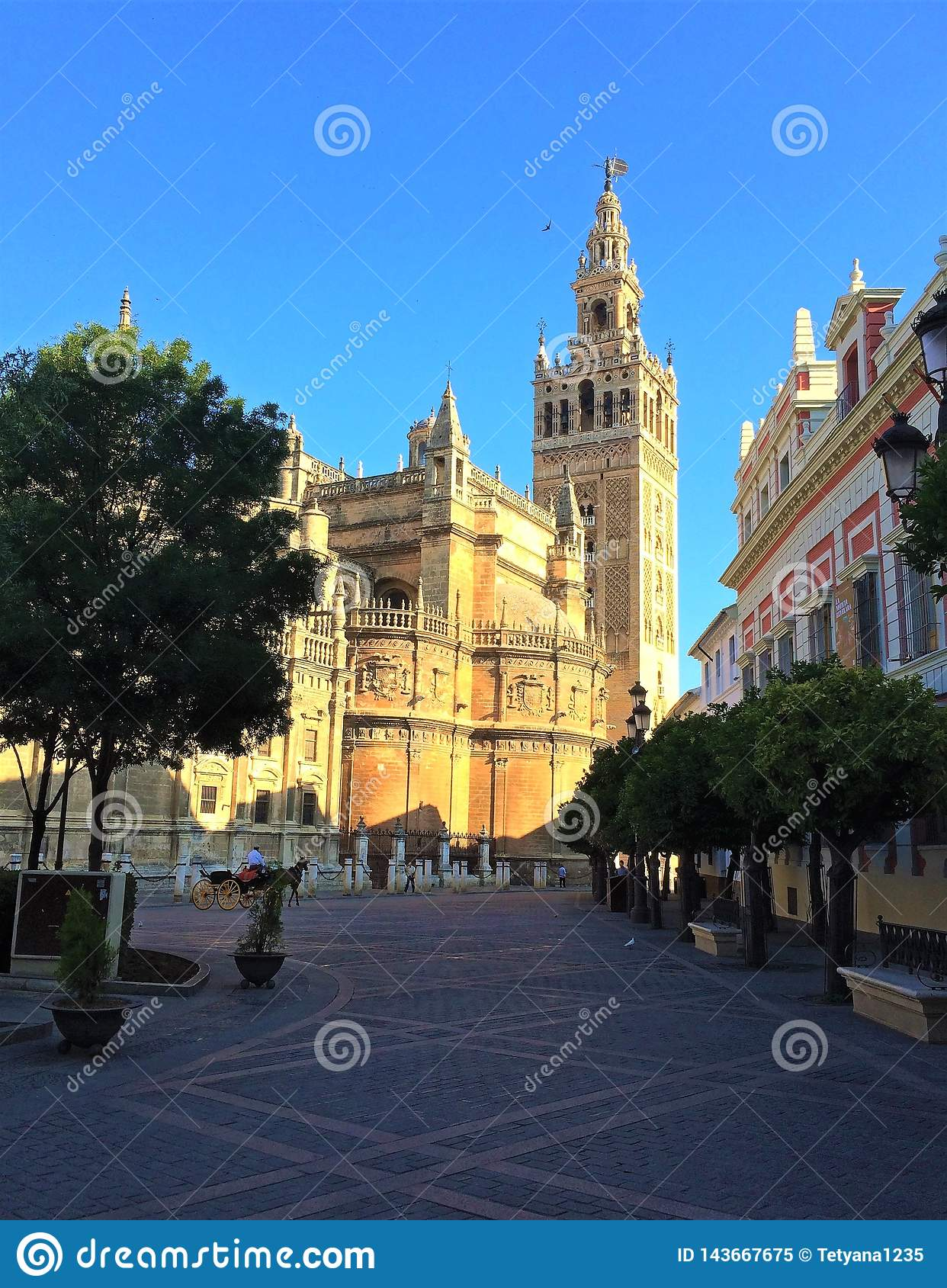 Catedral De Sevilla Seville Cathedral Spain Stock Image Image Of Century Building 143667675