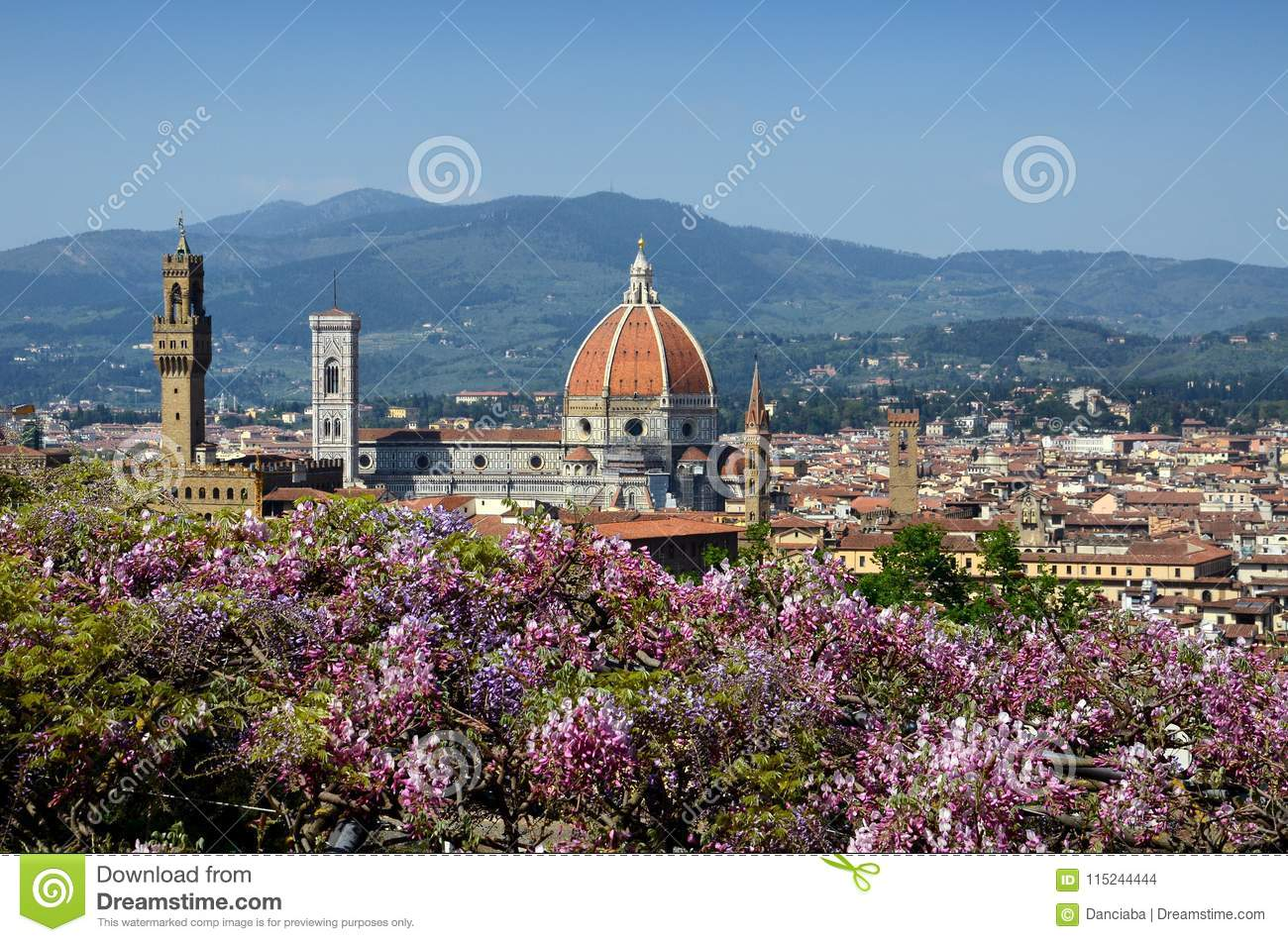 Cathedral Of Santa Maria Del Fiore In Florence As Seen From