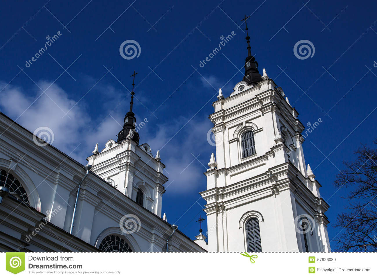 Catholic Cathedral in Ludza