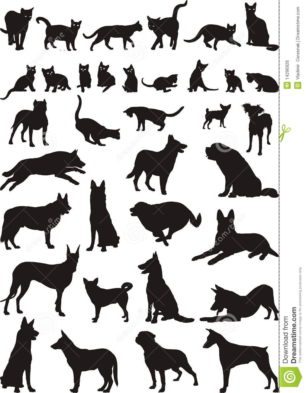 Cats And Dogs Vector Illustrations Stock Vector Illustration Of Mammal Elements 14296926